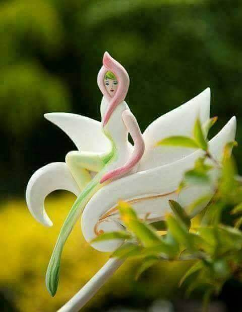 Lady Flower. Blossoms once in 5 years in Lenogav forests of Thailand hoax