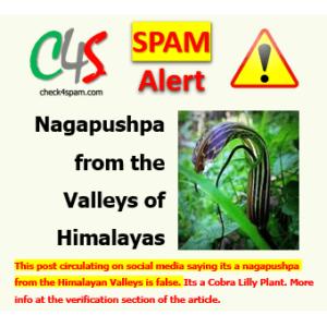 nagapushpa hoax