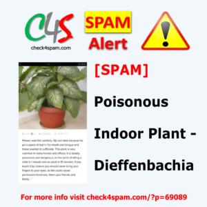 Dieffenbachia Poisonous Plant - SPAM